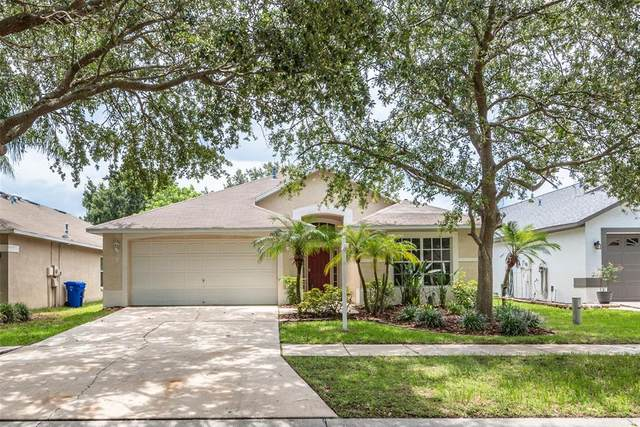 10120 Somersby Dr, Riverview, FL 33578 (MLS #T3319060) :: Century 21 Professional Group