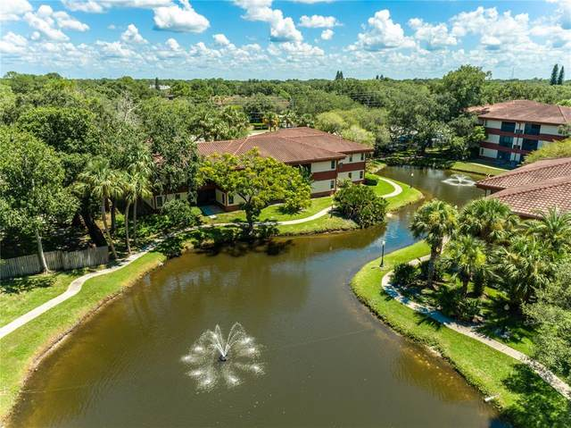 2650 Countryside Boulevard D203, Clearwater, FL 33761 (MLS #T3319113) :: The Nathan Bangs Group