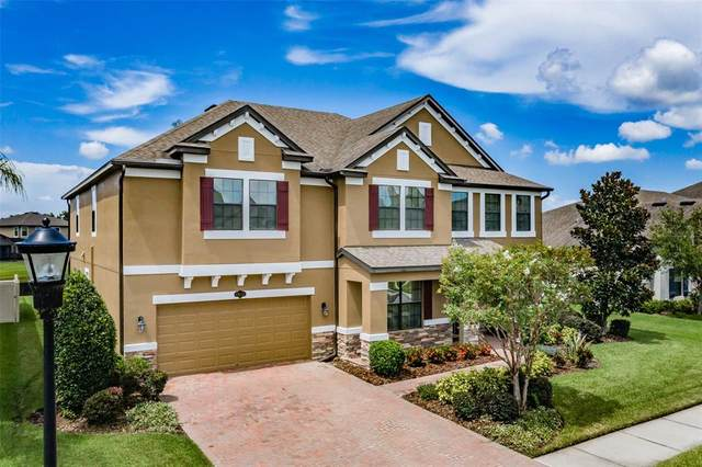 19431 Whispering Brook Drive, Tampa, FL 33647 (MLS #T3319151) :: Medway Realty