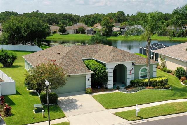 22052 Red Jacket Lane, Land O Lakes, FL 34639 (MLS #T3319153) :: Prestige Home Realty