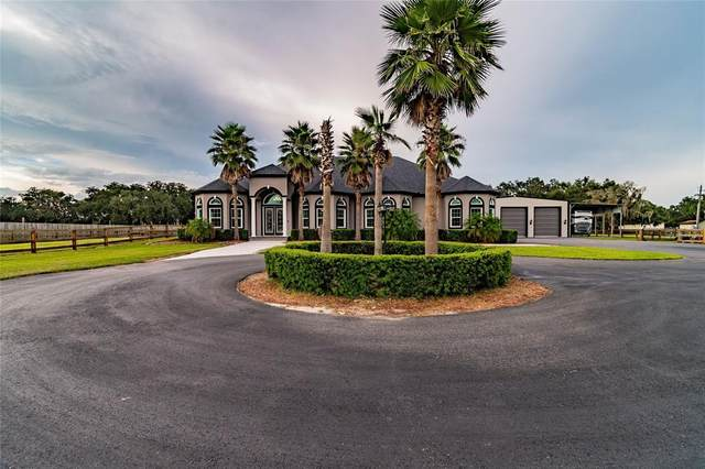 602 Swilley Road, Plant City, FL 33567 (MLS #T3319163) :: Zarghami Group
