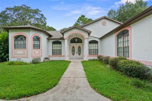 379 Martina Drive, Spring Hill, FL 34609 (MLS #T3319207) :: Vacasa Real Estate