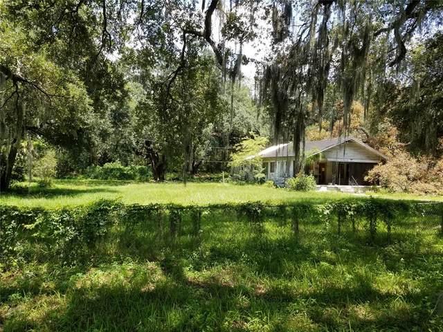4501 Orient Road, Tampa, FL 33610 (MLS #T3319225) :: Zarghami Group