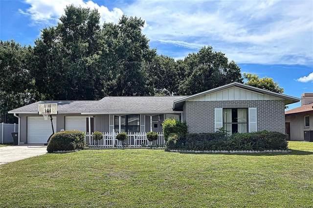 7104 Shenandoah Court, Tampa, FL 33615 (MLS #T3319244) :: Stellar Home Sales