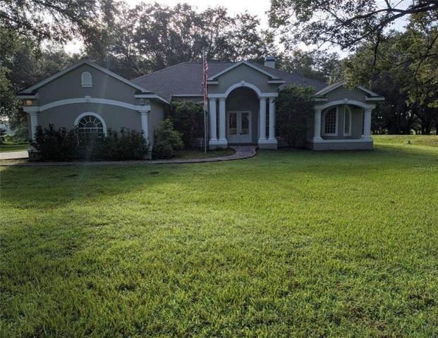 14714 Sherrod Croft, Dade City, FL 33525 (MLS #T3319323) :: Zarghami Group