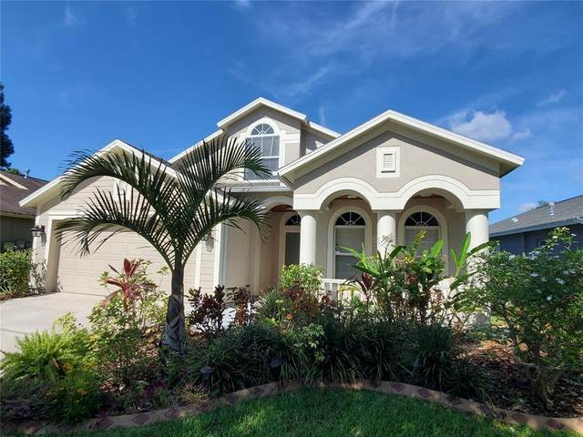 10138 Heather Sound Drive, Tampa, FL 33647 (MLS #T3319380) :: The Hustle and Heart Group