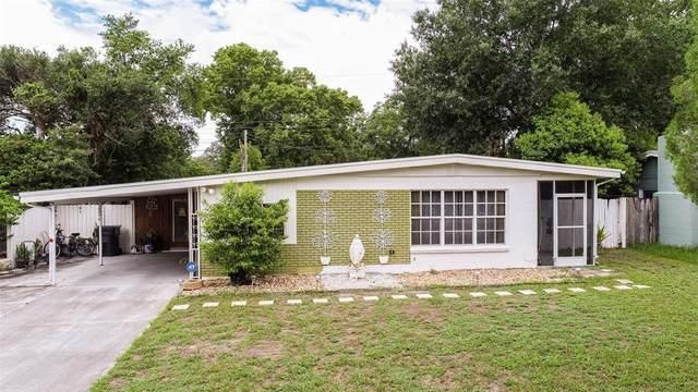 14814 Daisy Lane, Tampa, FL 33613 (MLS #T3319382) :: Aybar Homes