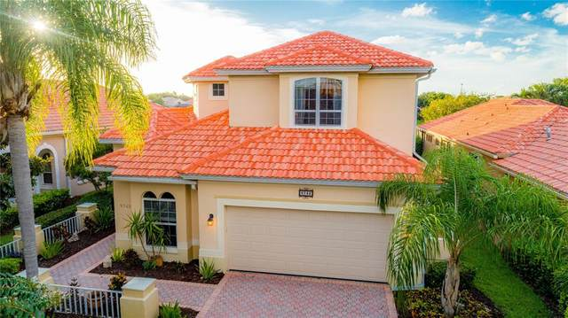 9742 Sago Point Drive, Seminole, FL 33777 (MLS #T3319385) :: Bridge Realty Group