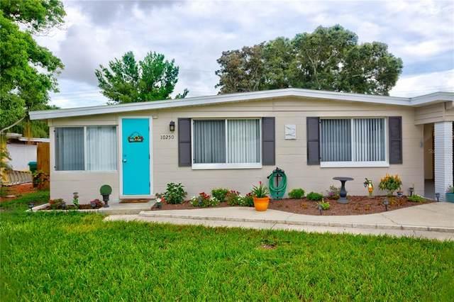 10250 110TH Avenue, Largo, FL 33773 (MLS #T3319418) :: CARE - Calhoun & Associates Real Estate
