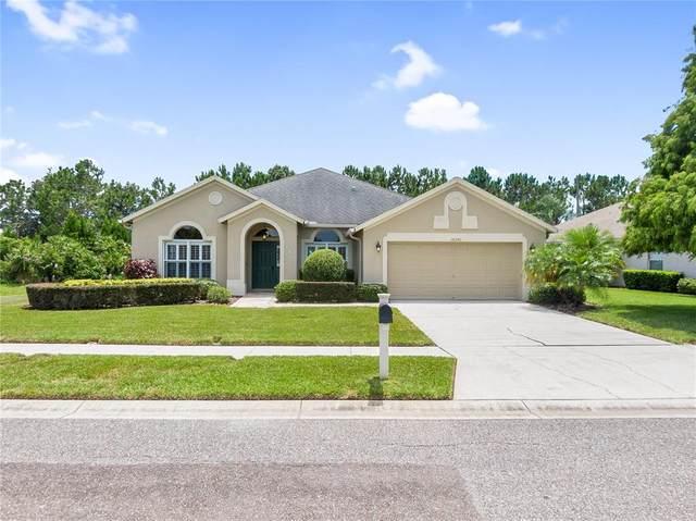 16540 Nikki Lane, Odessa, FL 33556 (MLS #T3319426) :: Zarghami Group