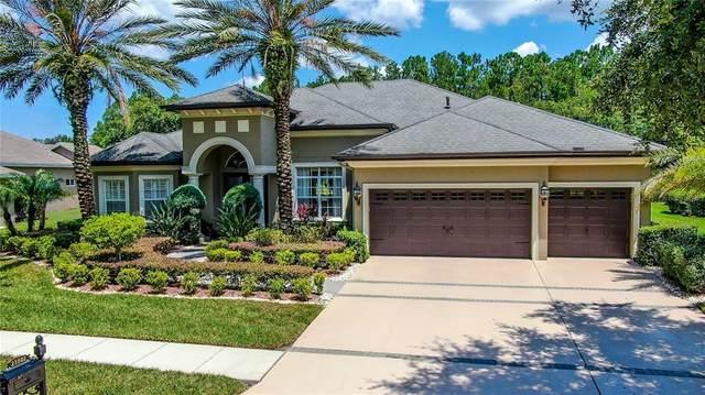 21301 Lake Vienna Drive, Land O Lakes, FL 34638 (MLS #T3319493) :: Cartwright Realty