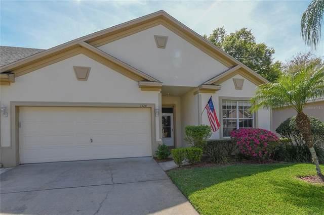 1328 Big Pine Drive, Valrico, FL 33596 (MLS #T3319496) :: Realty Executives