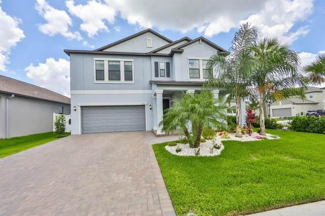 13201 Haystack Court, Riverview, FL 33579 (MLS #T3319498) :: Zarghami Group