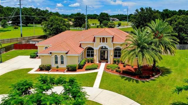 13318 Jaudon Ranch Road, Dover, FL 33527 (MLS #T3319508) :: Zarghami Group