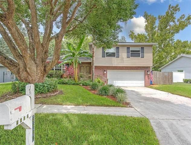 2801 Linden Tree Street, Seffner, FL 33584 (MLS #T3319520) :: Dalton Wade Real Estate Group