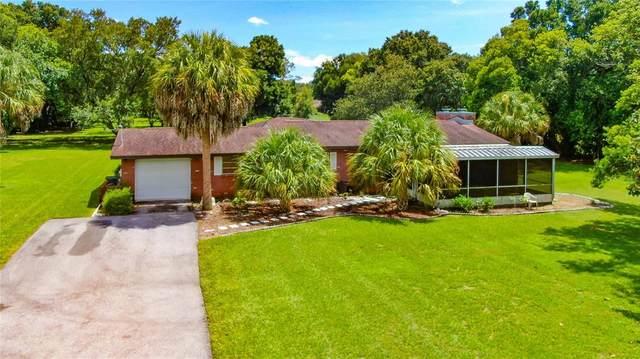 1201 Hummingbird Lane, Brandon, FL 33511 (MLS #T3319522) :: The Hustle and Heart Group