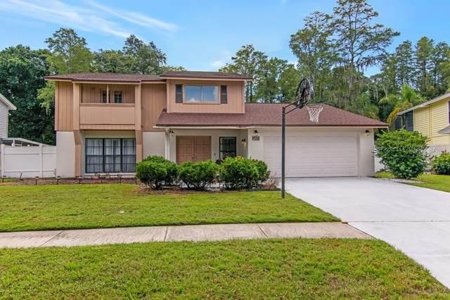 4312 Grainary Avenue, Tampa, FL 33624 (MLS #T3319562) :: Zarghami Group