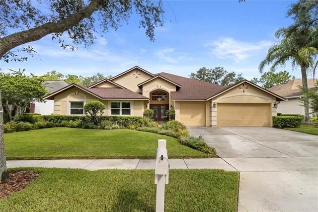 8732 Tantallon Circle, Tampa, FL 33647 (MLS #T3319576) :: Young Real Estate
