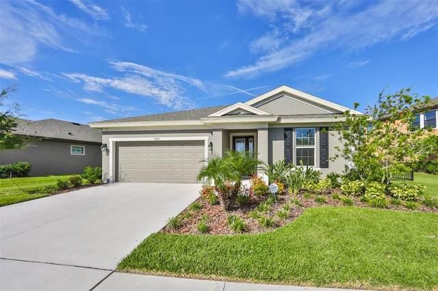 5427 Silver Sun Drive, Apollo Beach, FL 33572 (MLS #T3319593) :: Dalton Wade Real Estate Group