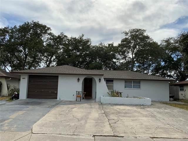 8907 Candlewick Lane, Port Richey, FL 34668 (MLS #T3319599) :: Zarghami Group