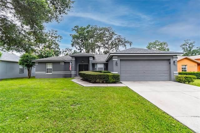 2929 Forest Reserve Place, Seffner, FL 33584 (MLS #T3319611) :: Prestige Home Realty