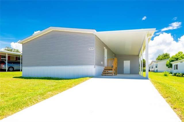 15054 Rialto Avenue, Brooksville, FL 34613 (MLS #T3319613) :: Globalwide Realty