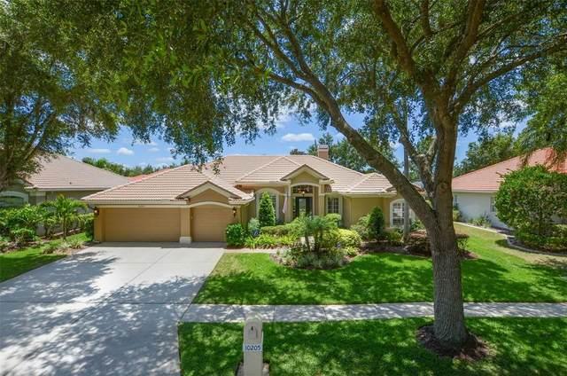 10205 Cypress Links Drive, Tampa, FL 33647 (MLS #T3319652) :: Team Bohannon