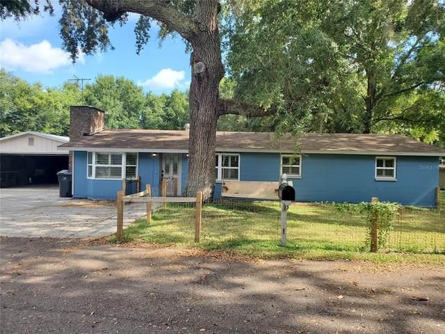11427 Weldon Street, Seffner, FL 33584 (MLS #T3319667) :: Rabell Realty Group