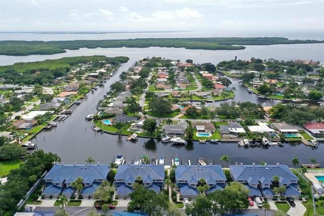 1680 Watermark Circle NE A, St Petersburg, FL 33702 (MLS #T3319674) :: Bridge Realty Group