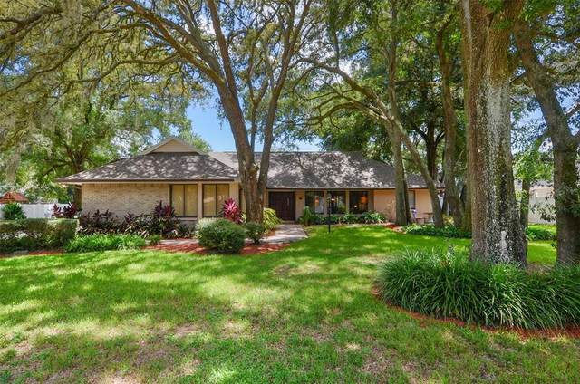 6317 E 113TH Avenue, Temple Terrace, FL 33617 (MLS #T3319676) :: Medway Realty