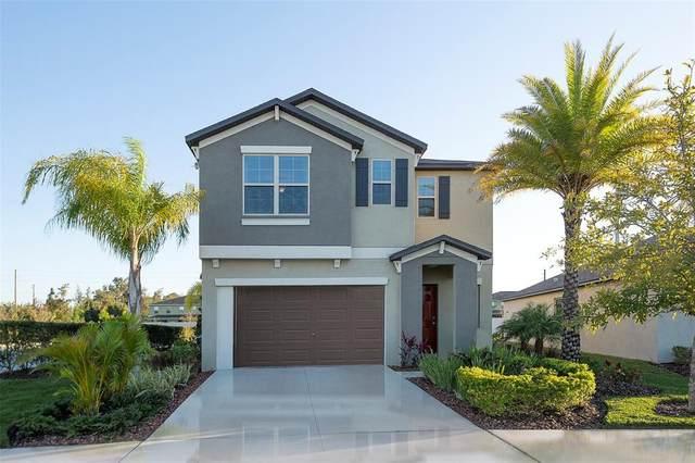 4213 Romano Busciglio Street, Tampa, FL 33619 (MLS #T3319680) :: Bridge Realty Group