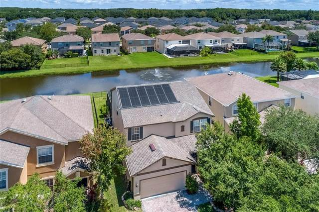 8837 Cameron Crest Drive, Tampa, FL 33626 (MLS #T3319687) :: Zarghami Group