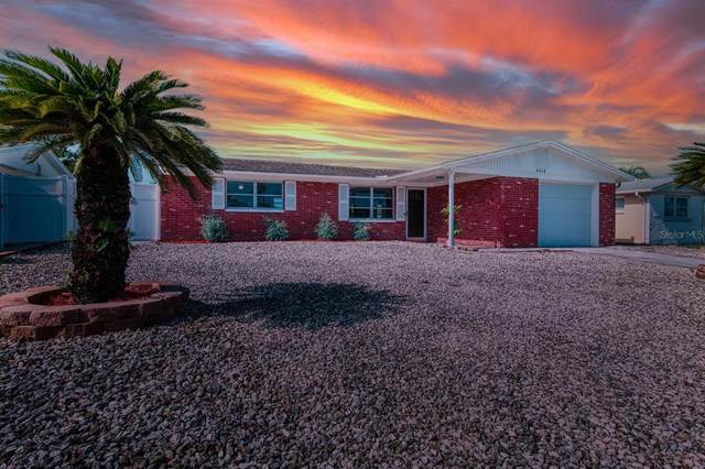 4218 Sunray Drive, Holiday, FL 34691 (MLS #T3319693) :: Premium Properties Real Estate Services