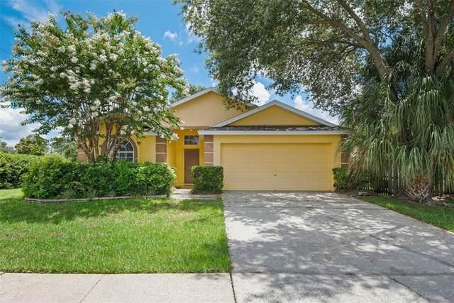 11215 Indian Oaks Drive, Tampa, FL 33625 (MLS #T3319698) :: Zarghami Group