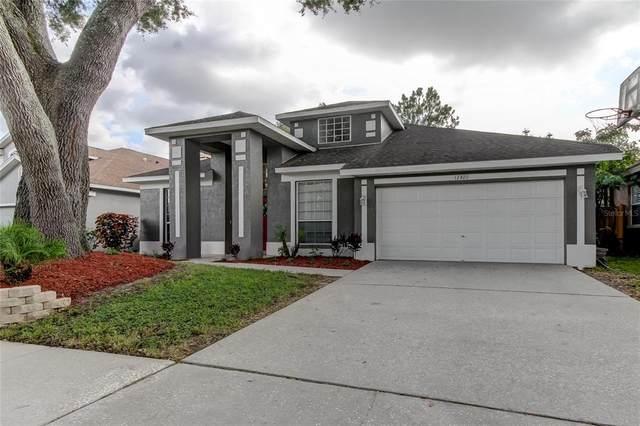 12820 Big Sur Dr, Tampa, FL 33625 (MLS #T3319699) :: Zarghami Group
