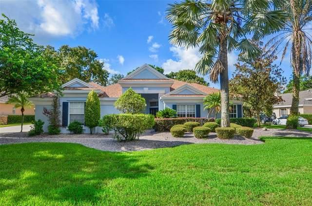 6023 Audubon Manor Boulevard, Lithia, FL 33547 (MLS #T3319701) :: Bridge Realty Group