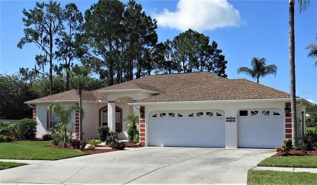 3702 Gaviota Drive, Sun City Center, FL 33573 (MLS #T3319706) :: Realty Executives