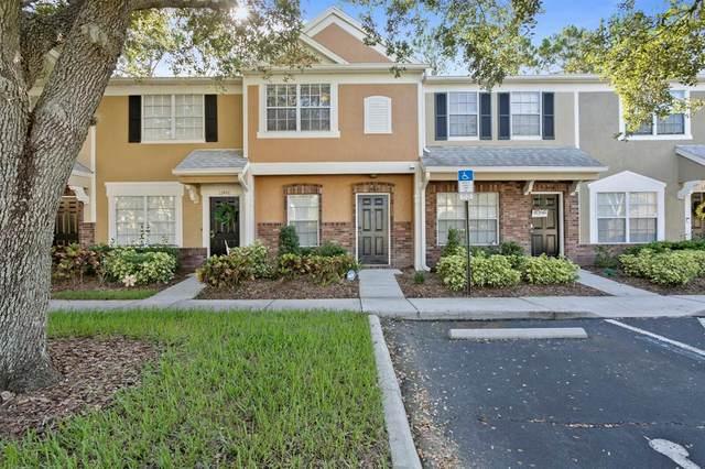 12452 Berkeley Square Drive, Tampa, FL 33626 (MLS #T3319708) :: Young Real Estate