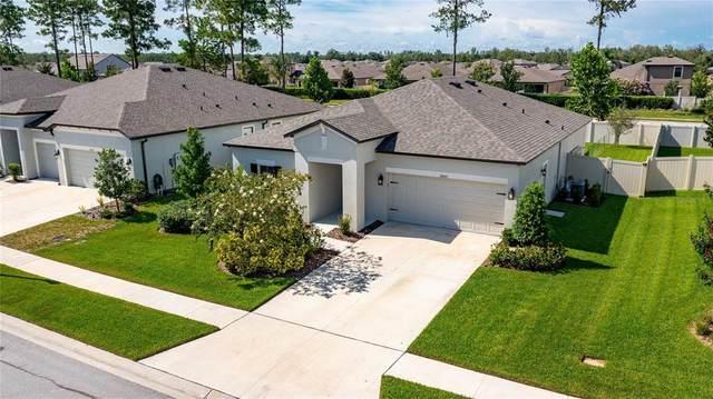 18665 Obregan Drive, Spring Hill, FL 34610 (MLS #T3319715) :: Burwell Real Estate