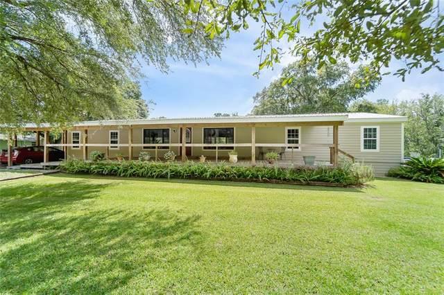 8810 Stanmoore Road, Plant City, FL 33565 (MLS #T3319731) :: Dalton Wade Real Estate Group