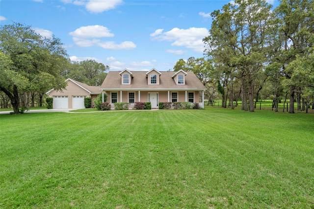 6198 S Lecanto Highway, Lecanto, FL 34461 (MLS #T3319736) :: Dalton Wade Real Estate Group