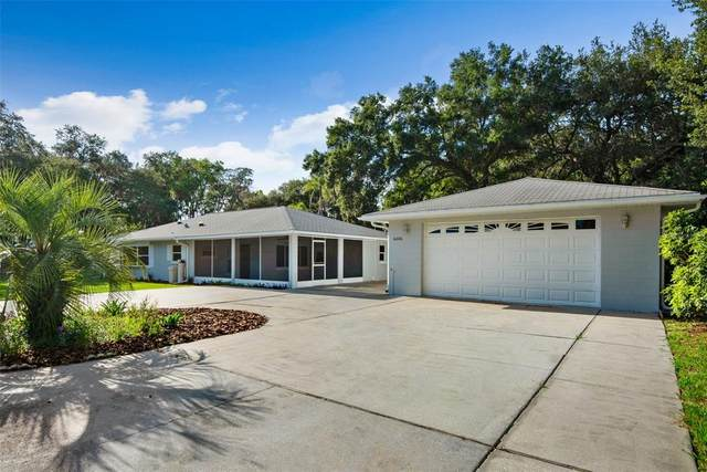 6006 Lafayette Street, New Port Richey, FL 34652 (MLS #T3319759) :: Aybar Homes