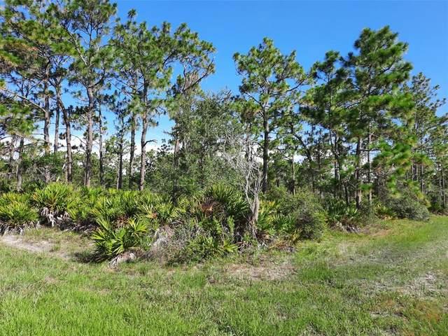 BLK 227 Lot 1 Oleander Drive, Indian Lake Estates, FL 33855 (MLS #T3319765) :: Rabell Realty Group