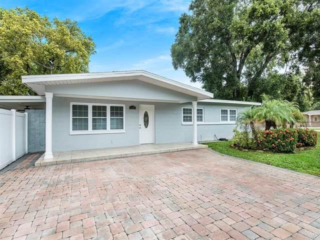 6600 N Orleans Avenue, Tampa, FL 33604 (MLS #T3319776) :: Zarghami Group