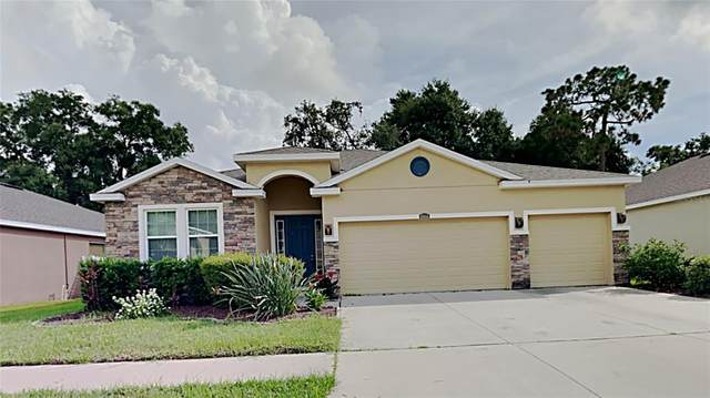 10414 Pleasant Spring Way, Riverview, FL 33578 (MLS #T3319802) :: The Robertson Real Estate Group