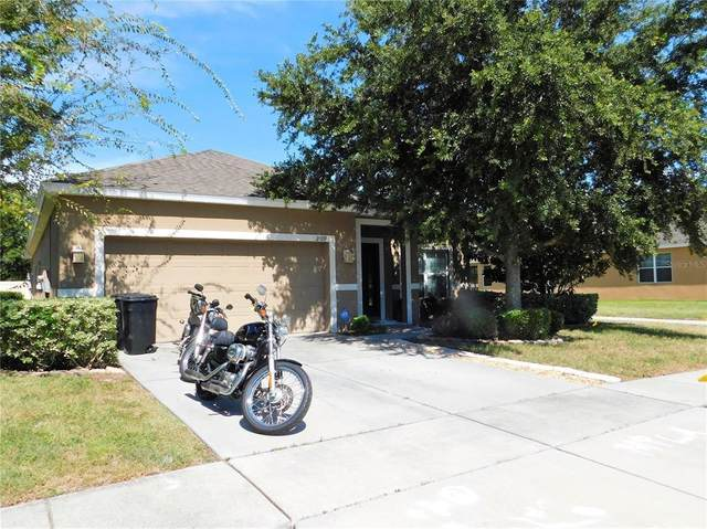 2409 Triggerfish Court, Holiday, FL 34691 (MLS #T3319808) :: Rabell Realty Group