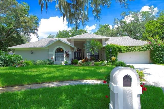 2104 Laindale Place, Valrico, FL 33596 (MLS #T3319836) :: Dalton Wade Real Estate Group