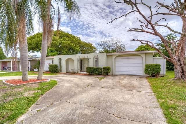 4274 Woodsville Drive, New Port Richey, FL 34652 (MLS #T3319840) :: Prestige Home Realty