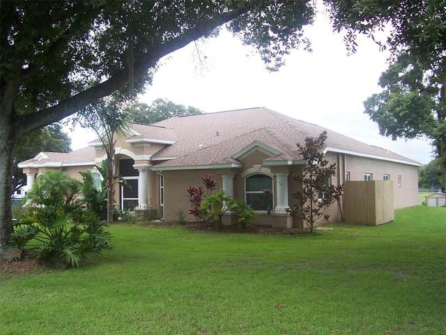 3412 Wolfe Road, Zephyrhills, FL 33541 (MLS #T3319849) :: Century 21 Professional Group
