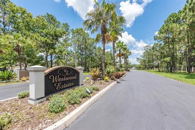 8336 Woodleaf Boulevard, Wesley Chapel, FL 33544 (MLS #T3319850) :: Realty Executives